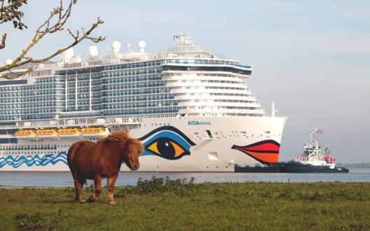 Pferd und Kreuzfahrtschiff AIDAnova