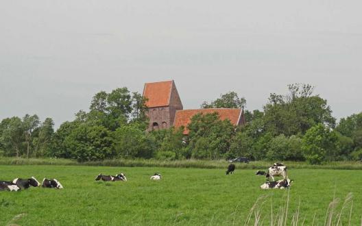 Die Kirche in Suurhusen ist schon von weitem gut sichtbar